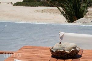 Maistrali Studios & Apartments_holidays_in_Apartment_Cyclades Islands_Naxos_Naxos Chora