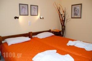 Maistrali Studios & Apartments_best prices_in_Apartment_Cyclades Islands_Naxos_Naxos Chora