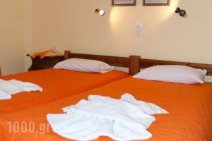 Maistrali Studios & Apartments_best deals_Apartment_Cyclades Islands_Naxos_Naxos Chora