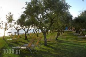 Eleon Grand Resort & Spa_accommodation_in_Hotel_Ionian Islands_Zakinthos_Zakinthos Rest Areas