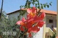 Hotel Heleni Apartments in Archea (Palea) Epidavros , Argolida, Peloponesse