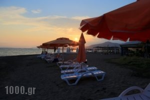 Akrogiali_holidays_in_Apartment_Central Greece_Evia_Amaranthos