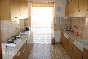 Akrogiali_best deals_Apartment_Central Greece_Evia_Amaranthos
