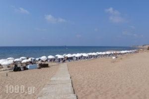 River Studios_holidays_in_Apartment_Ionian Islands_Corfu_Moraitika