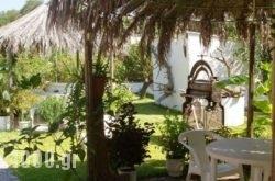 Baha-Ammes in Kefalonia Rest Areas, Kefalonia, Ionian Islands