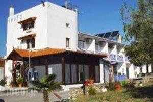 Erato_lowest prices_in_Hotel_Central Greece_Viotia_Livadia