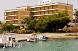 Alkyon in  Portocheli, Argolida, Peloponesse