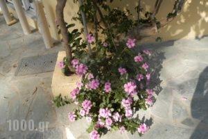 Drosia_best deals_Hotel_Crete_Chania_Georgioupoli