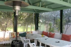 Chroma Studios_best prices_in_Apartment_Central Greece_Evia_Edipsos