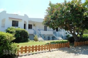 Evi Apartments And Studios_holidays_in_Apartment_Dodekanessos Islands_Rhodes_Theologos