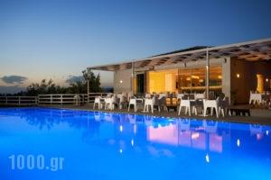 Irene Studios_lowest prices_in_Apartment_Central Greece_Evia_Artemisio