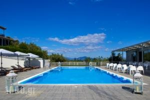 Irene Studios_travel_packages_in_Central Greece_Evia_Artemisio