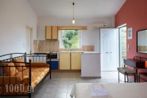 Irene Studios_holidays_in_Apartment_Central Greece_Evia_Artemisio