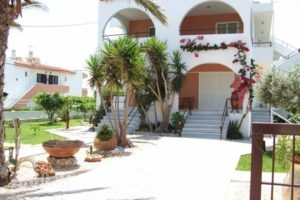 Sokrates Studios_best prices_in_Hotel_Dodekanessos Islands_Rhodes_Rhodes Areas