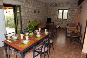 Ammos Villas_holidays_in_Villa_Ionian Islands_Zakinthos_Zakinthos Rest Areas