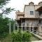 Ammos Villas_accommodation_in_Villa_Ionian Islands_Zakinthos_Zakinthos Rest Areas