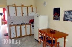 Louiza Apartments in Galaxidi, Fokida, Central Greece