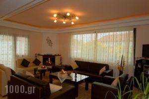 Ydraktis_best deals_Hotel_Macedonia_Pella_Orma