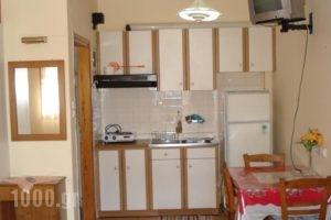 Zephyros_holidays_in_Hotel_Peloponesse_Arcadia_Stemnitsa