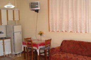 Zephyros_best deals_Hotel_Peloponesse_Arcadia_Stemnitsa
