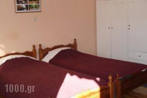 Zephyros_best prices_in_Hotel_Peloponesse_Arcadia_Stemnitsa