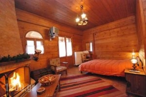 Guesthouse Alonistaina_lowest prices_in_Hotel_Peloponesse_Arcadia_Stemnitsa