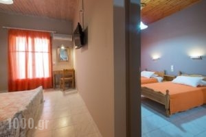 Katerina Rooms_holidays_in_Hotel_Ionian Islands_Zakinthos_Zakinthos Rest Areas