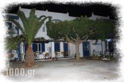 Perasma Studios in Andros Rest Areas, Andros, Cyclades Islands