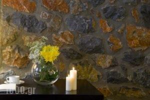 Domotel Neve Mountain Resort' Spa_best prices_in_Hotel_Macedonia_Pella_Edessa City