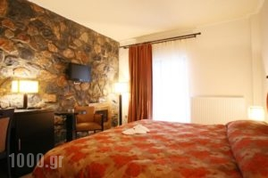Domotel Neve Mountain Resort' Spa_lowest prices_in_Hotel_Macedonia_Pella_Edessa City
