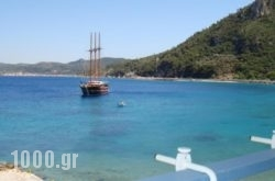 Hotel Avlakia in Samos Rest Areas, Samos, Aegean Islands