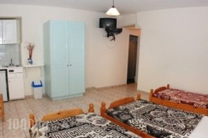 Apollo_holidays_in_Apartment_Ionian Islands_Zakinthos_Argasi