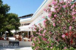 Galini_travel_packages_in_Piraeus Islands - Trizonia_Aigina_Agia Marina