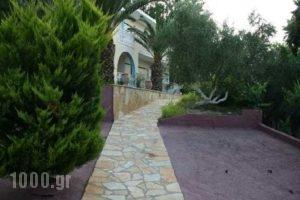 Christina_accommodation_in_Apartment_Ionian Islands_Zakinthos_Planos