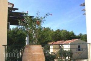 Silo Apartments_accommodation_in_Apartment_Ionian Islands_Kefalonia_Argostoli