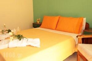 Vera Lilli_accommodation_in_Hotel_Aegean Islands_Thasos_Thasos Chora