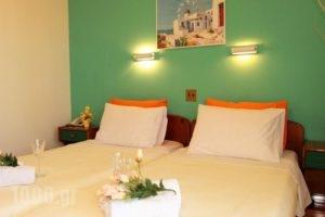 Vera Lilli_holidays_in_Hotel_Aegean Islands_Thasos_Thasos Chora