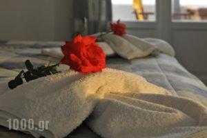 Anixis Studios_holidays_in_Hotel_Cyclades Islands_Paros_Paros Chora