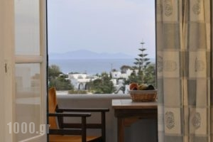 Anixis Studios_best deals_Hotel_Cyclades Islands_Paros_Paros Chora