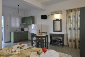 Anixis Studios_lowest prices_in_Hotel_Cyclades Islands_Paros_Paros Chora