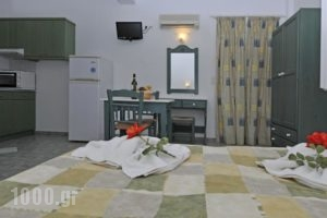 Anixis Studios_accommodation_in_Hotel_Cyclades Islands_Paros_Paros Chora