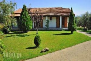 Villas Lefkothea_best deals_Villa_Crete_Rethymnon_Plakias