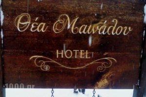 Thea Mainalou_accommodation_in_Hotel_Peloponesse_Arcadia_Stemnitsa