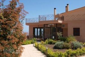 Hotel Theasi_lowest prices_in_Hotel_Peloponesse_Achaia_Diakopto
