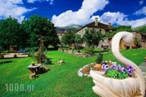 Kalliopi_accommodation_in_Hotel_Epirus_Ioannina_Papiggo