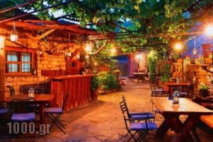 Kalliopi_holidays_in_Hotel_Epirus_Ioannina_Papiggo