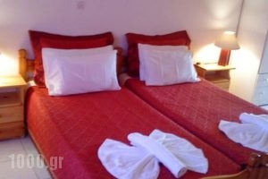 Marketos Apartments_lowest prices_in_Apartment_Ionian Islands_Kefalonia_Vlachata