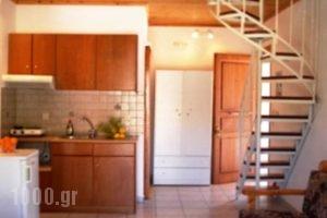 Marketos Apartments_best deals_Apartment_Ionian Islands_Kefalonia_Vlachata