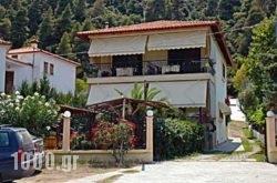 Villa Stella Apartments in Chalkidiki Area, Halkidiki, Macedonia