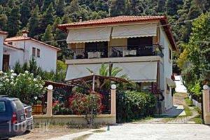 Villa Stella Apartments_accommodation_in_Villa_Macedonia_Halkidiki_Chalkidiki Area